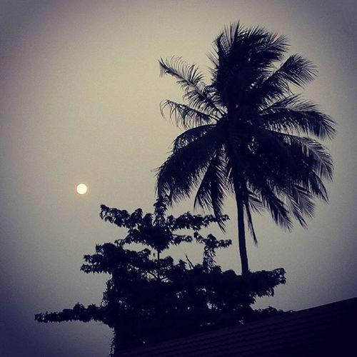 Matahari tertutupi kabut Photographer Samsungj1camera Banjarmasin Anjirmuarakota
