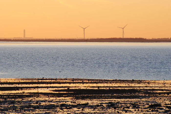 Alternative Energy Beauty In Nature Environmental Conservation Fuel And Power Generation Nature Orange Color Outdoors Sea Sea And Sky Sun Sunset Tranquil Scene Tranquility Water Whitstable Wind Power Wind Turbine