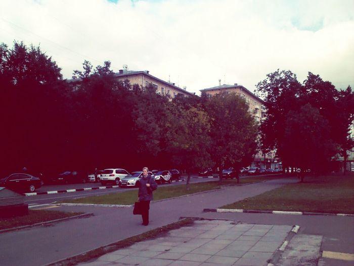 Мой дом ЛенинскийПроспект Гагаринский ЮЗАО Москва