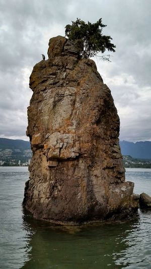 Heron gardian of siwash rock in vancouver, BC Sea Travel Rock - Object Water Outdoors Day Landscape Canada Scenics Travel Destinations Stanley Park, Vancouver British Columbia Vancouver BC Canada Coast To Coast Sea Wall Landscape_photography Siwashrock