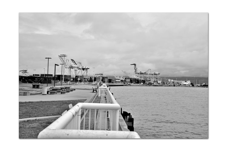View From Middle Harbor 1 Port Of Oakland, Ca. Shoreline Park Oaklands Long Wharf Mole Waterfront Harbor Port Cranes Containers Oakland Estuary Eastbay Hills Foggy Day Fog Diminishing Perspective Eastbay Hills Water Monochrome_Photography Monochrome Black & White Black & White Photography Black And White Black And White Collection  Concrete Tables & Benches Handrails