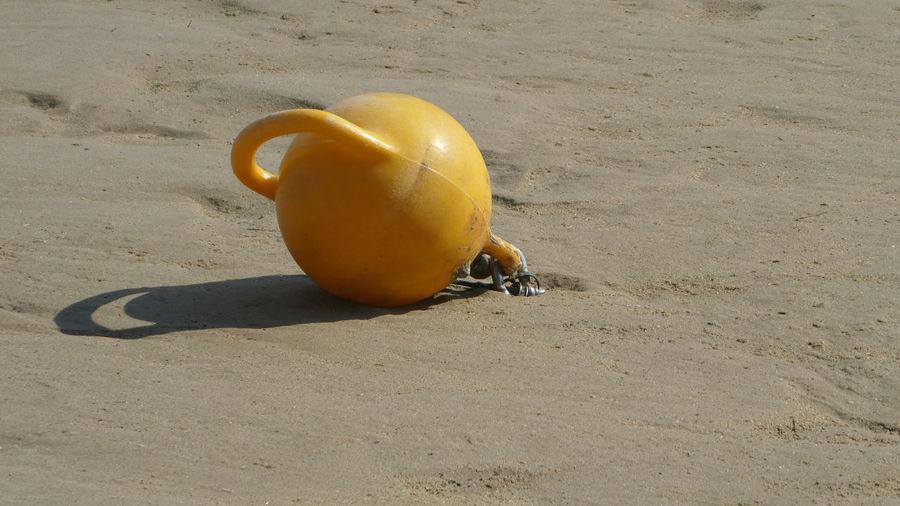 High angle view of fruit on sand