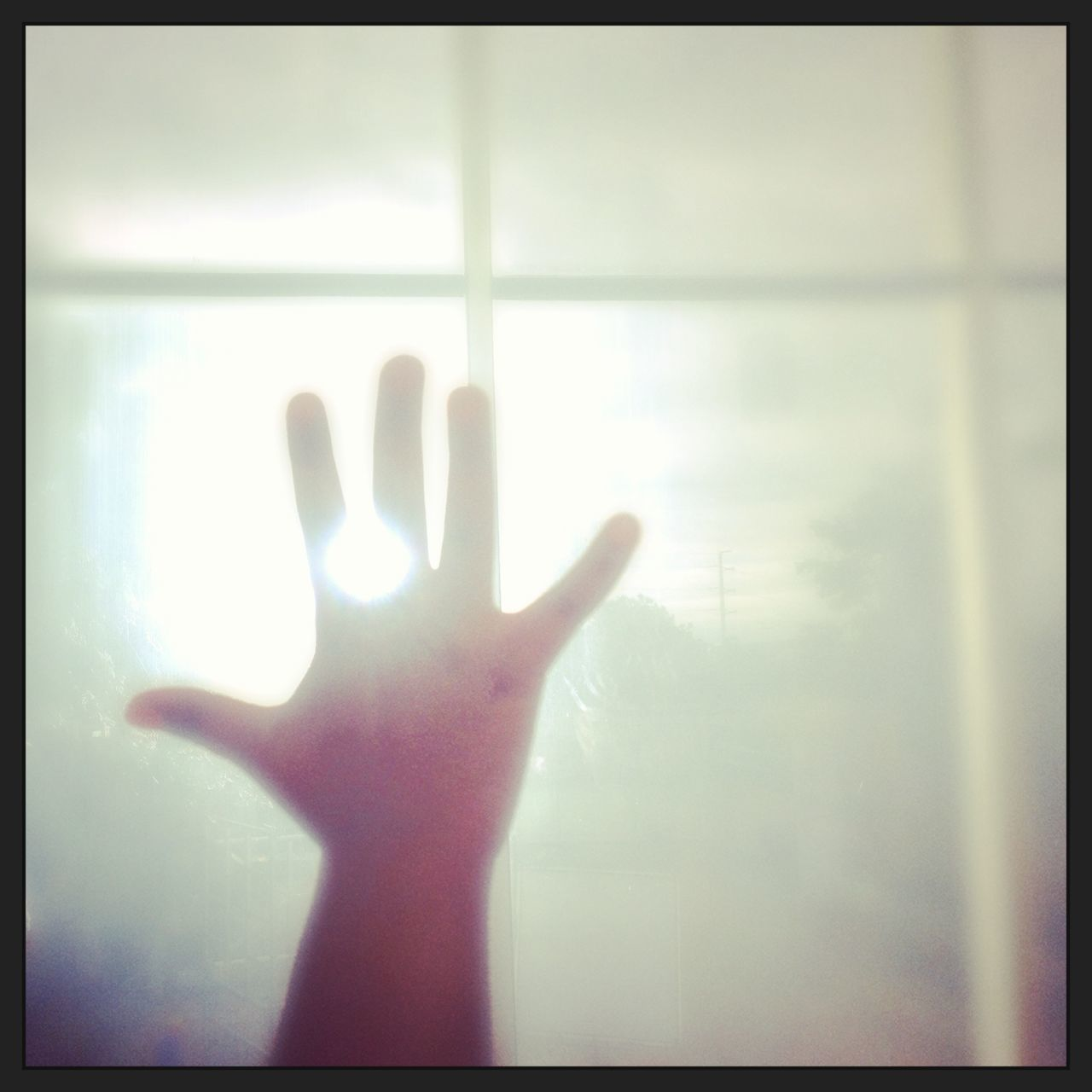 human hand, human finger, human body part, gesturing, one person, indoors, window, day, palm, real people, close-up, sky, people
