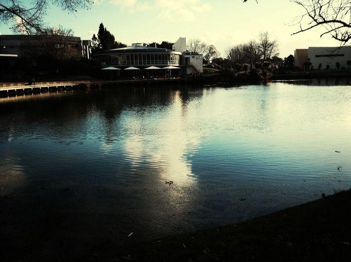 Nice Day At Uni