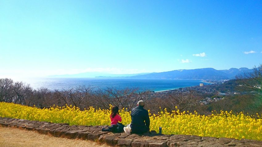 Sea And Sky Family Yellow Flower Hanging Out Hello World Relaxing Enjoying Life Nature Beautiful Atmountain Japan Walking Around Inlife Good Times