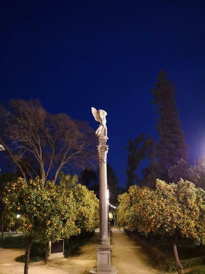 Sevilla Spain On Sale Atardecer Moms & Dads Tree Illuminated Sculpture Statue Blue Sky Plant Bare Tree Dead Plant Wilted Plant Single Tree
