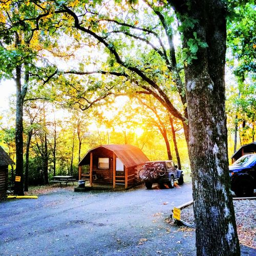 Sunsets create crazy effects no matter where you are. EyeEmNewHere Fall HotSpringsNationalPark Nikon Sunset Tree Tree Trunk Road Sky Architecture Built Structure Building Exterior Leaves First Eyeem Photo