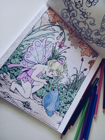 22.09.15 Fairy Bird Painting Good Times Goodday Fun Peri Kus Boyamakitabı Boyama