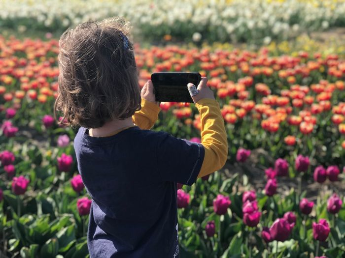 Rear view of boy photographing on mobile phone by plants