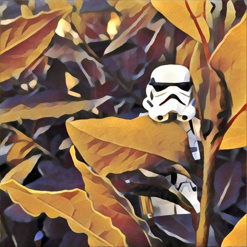Imperial Soldier Legophotography Nature Plant Star Wars Stormtrooper STARWARS Wallpaper