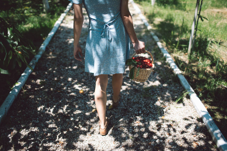 Low section of woman walking with cherries in basket on footpath