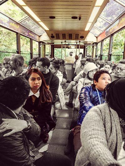 The Human Condition HK 太平山
