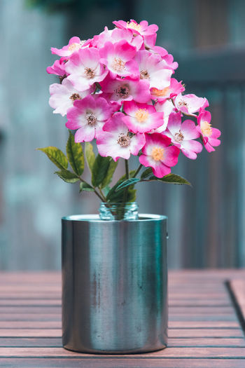 Flower Vase Fragility Jar Flower Head Table No People Nature Freshness Airtight Indoors  Bouquet Beauty In Nature Day Close-up Hoorn Richard NIKON D5300 RCW Photography The Square Breaker Square Breaker Photography Hoorn, Netherlands