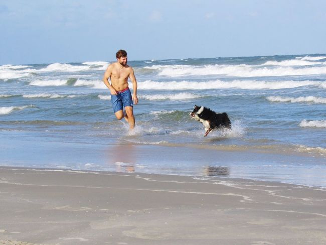 People And Places Dog❤ Beach Beach Photography Playtime Waves Horizon Over Water Motion Running Taking Photos People Watching North Padre Island Corpus Christi, Tx Beach Fun Sunny