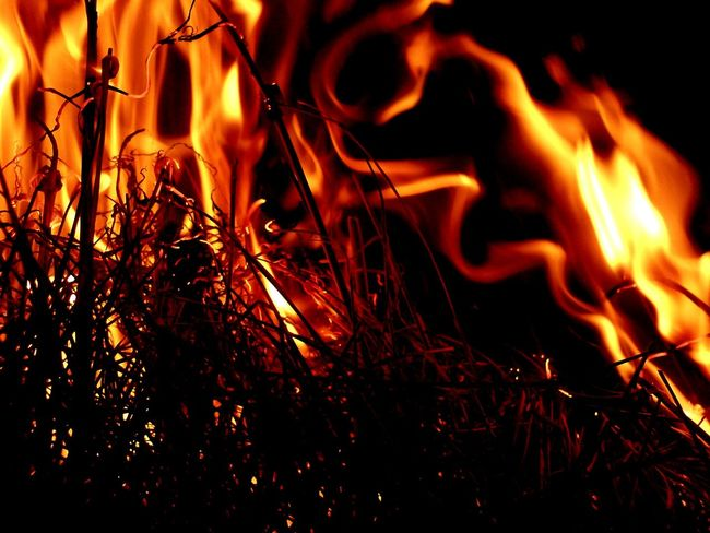 Flame Burning Lauvøya