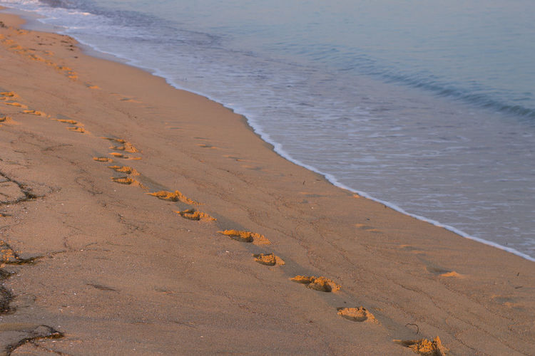 Track - Imprint Sunset Wave Sand Dune Sea Beach Water Sand Low Tide Landscape FootPrint Coastline Coast Sandy Beach Calm