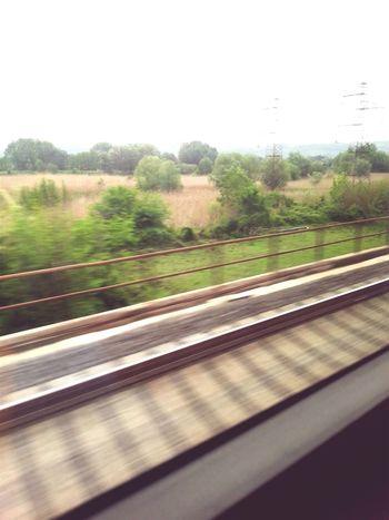 On travel Travelling Landscape Italy Train Italo