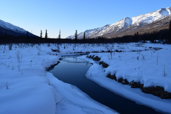 Hiking in Alaska Alaska Cold Temperature Snow Winter Nature Mountain Tranquil Scene Colour Your Horizn Beauty In Nature Frozen Landscape Outdoors Mountain Range