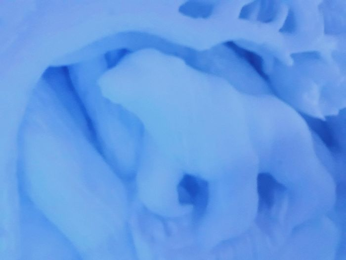 Beary beautiful Nature_collection Ice Art Art Cold Temperature Shadow And Light Ice Hotel Bear Carved In Ice Nature On Your Doorstep Blue Frozen Icecold Ice Christmas_collection Travel Magical Place Travel_collection Frozen Ice Carving Cool Places Crafted Beauty Blue Close-up No People Backgrounds Nature Beauty In Nature Full Frame High Angle View Water Abstract