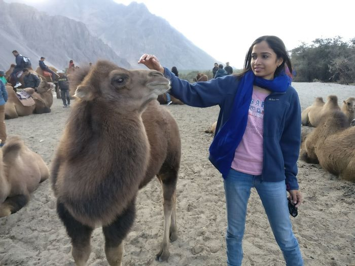 Camel Sand Dune Silence Communication Animal Themes Sunlight Sky Vacations Beauty In Nature Mammal Meat Real People Day