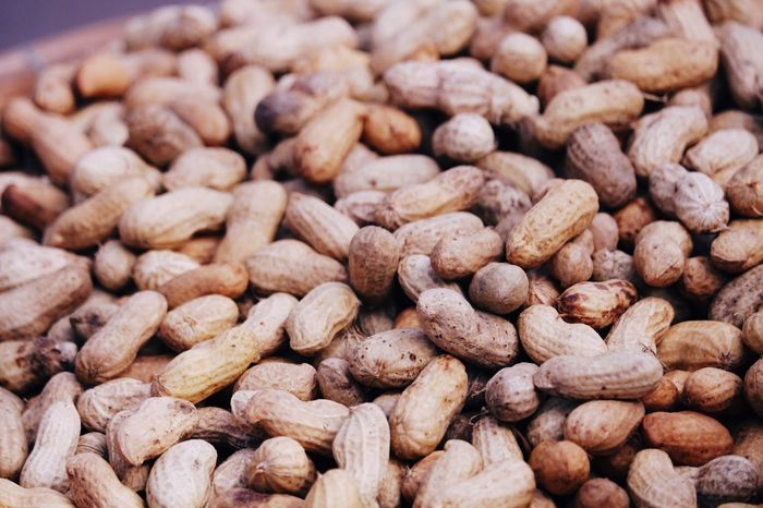 Nut Nuts Food Close-up Backgrounds Coffee Bean No People Many Beans Asia