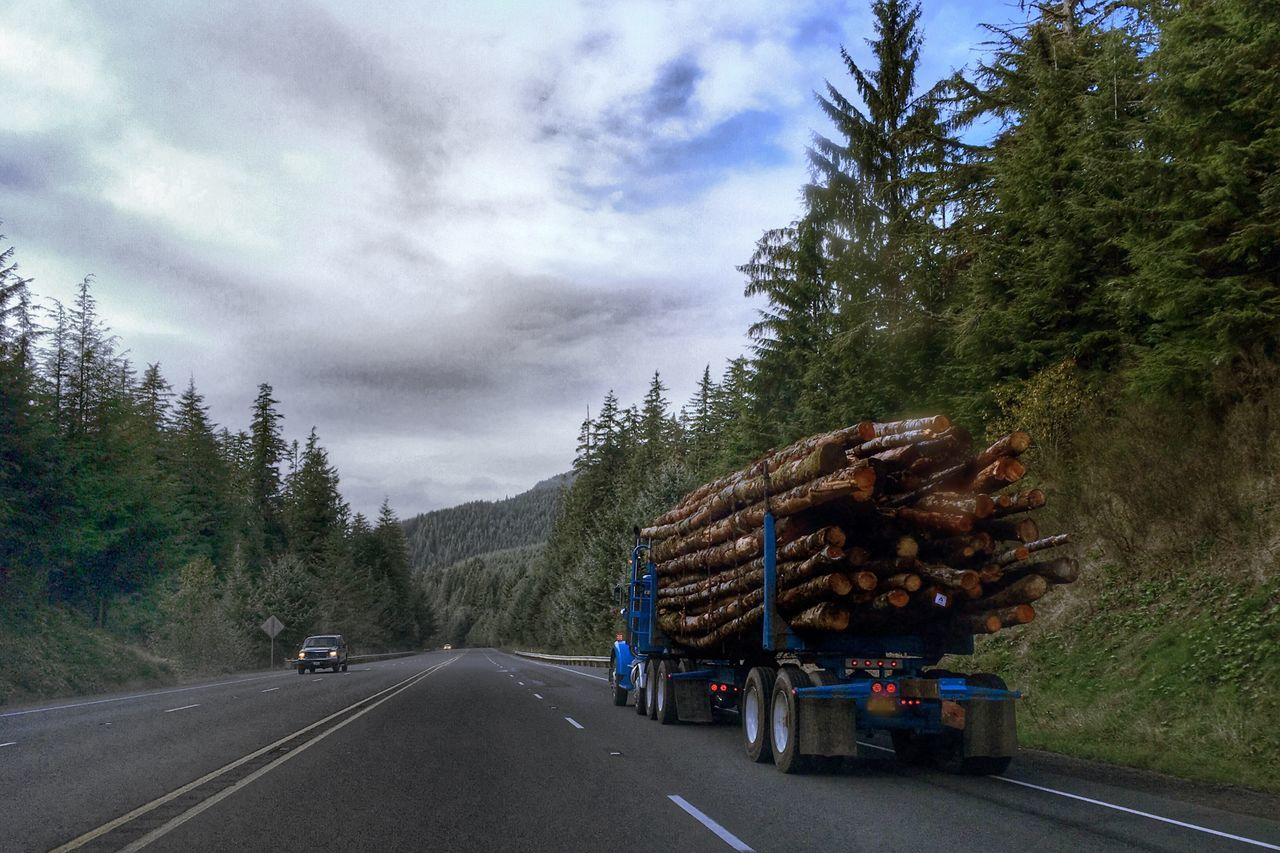 Truck carrying log on street against cloudy sky