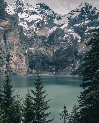 Mountain Water Beauty In Nature Tree Plant Scenics - Nature Lake Nature Cold Temperature Snow Day Reflection No People Tranquil Scene Winter Waterfront Tranquility Scenery Outdoors Mountain Peak Mountain Range Snowcapped Mountain Coniferous Tree Oeschinensee
