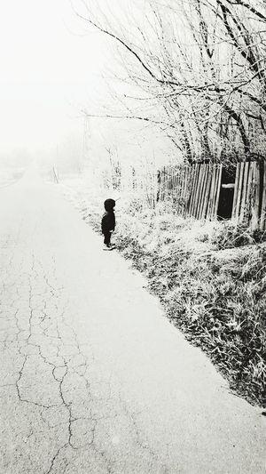 Alone Alone In