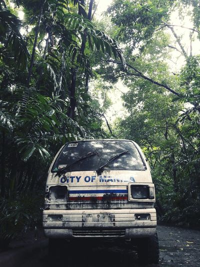 Neglected Vehicle Urban Park Forest Park Manila Tree Water Car Wet Monsoon Rainy Season Land Vehicle