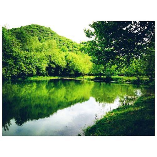 Karachaevsk Kchr зеленыйостров карачаевск кчр