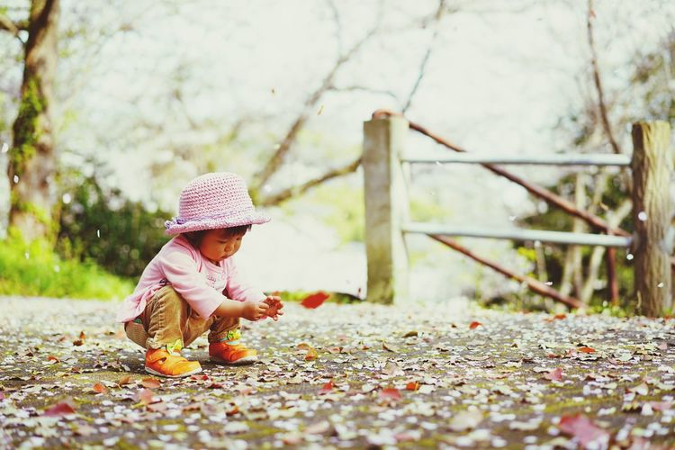 Full Length Of Cute Baby Girl Playing With Dry Leaves At Park During Autumn