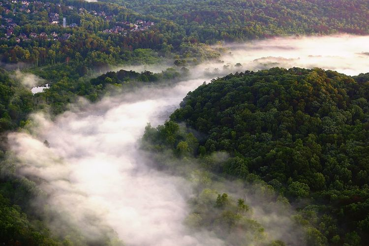 Morning river fog Plant Tree Beauty In Nature Scenics - Nature Nature No People Cloud - Sky Environment Landscape Day Green Color Tranquil Scene Outdoors Growth Land High Angle View Tranquility Aerial View Non-urban Scene