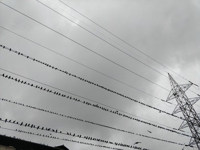 Architecture Built Structure Cable Cloud - Sky Connection Day Electrical Equipment Electricity  Electricity Pylon Fuel And Power Generation In A Row Low Angle View Metal Nature No People Outdoors Power Line  Power Supply Sky Technology
