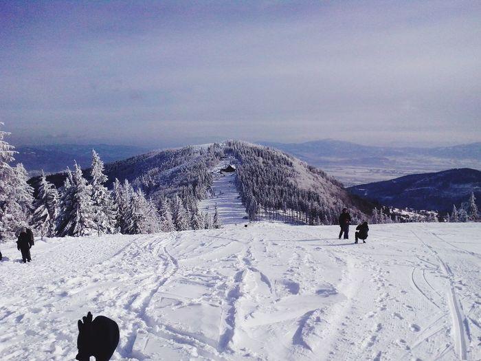 Mountain View Winter Walk Wintertime Poland Bielsko-Biała