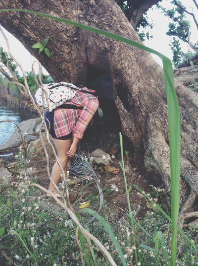 The rabbit hole Tacloban