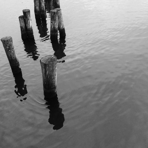 2017 Reflection Water Black And White Collection  Black&white Black And White Photography Blackandwhite Photography Black & White Black And White Blackandwhitephotography Blackandwhite Blackandwhitephoto No People Wooden Post Wooden Posts The Week On EyeEm Black And White Friday