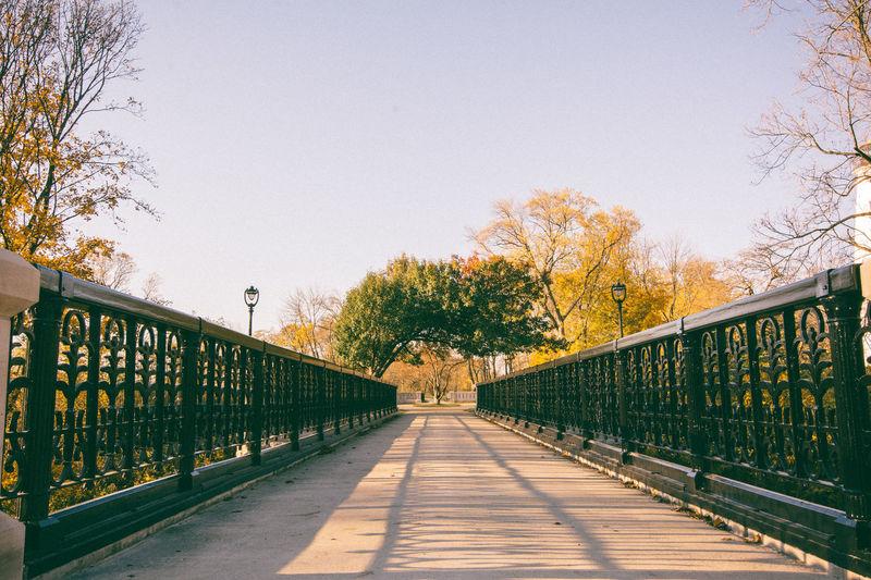 Railing at pedestrian bridge by trees against sky