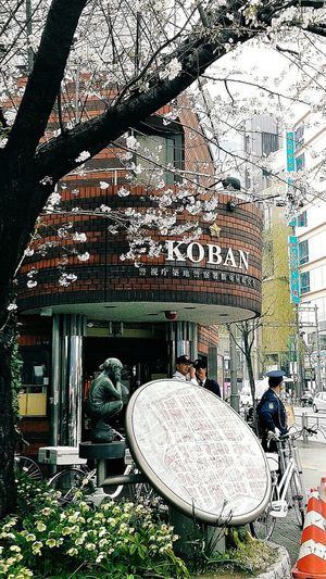 Koban small neighbourhood police station Ginza Building Architecture Police Tokyo Japan Travel Photography