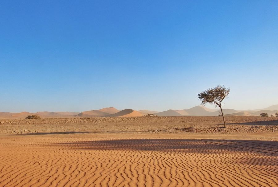 Namib Dünenlandschaft Namib Dunes Namib Desert Dunes Sand Namibia The Great Outdoors With Adobe The Great Outdoors The Great Outdoors - 2016 EyeEm Awards