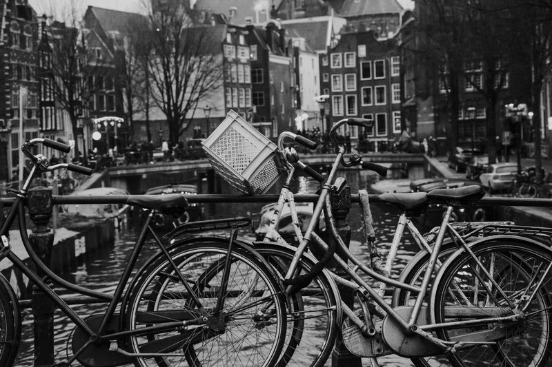 Iconic bicycles