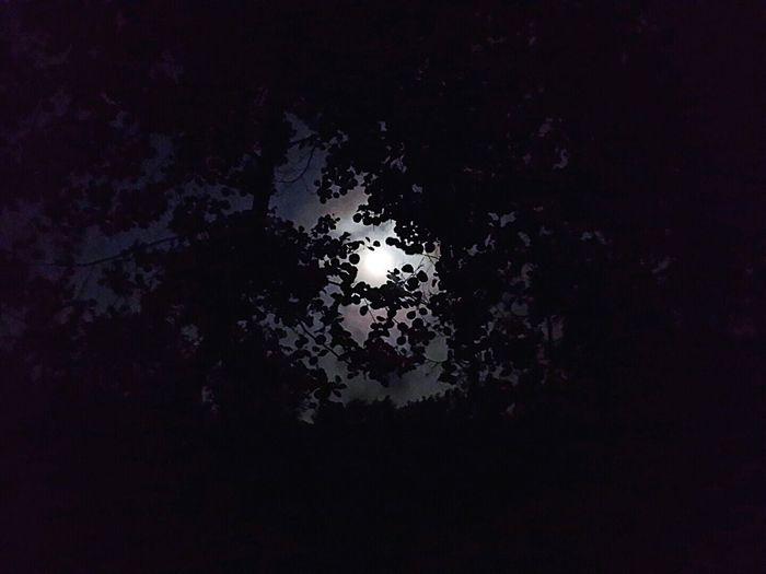 Killer Sumabeach Moon Moon Light Dolunay🌛 Dolunay Istanbul Turkey Hello World Follow Istanbuldayasam