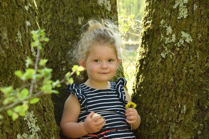 Portrait of cute girl standing against tree trunk