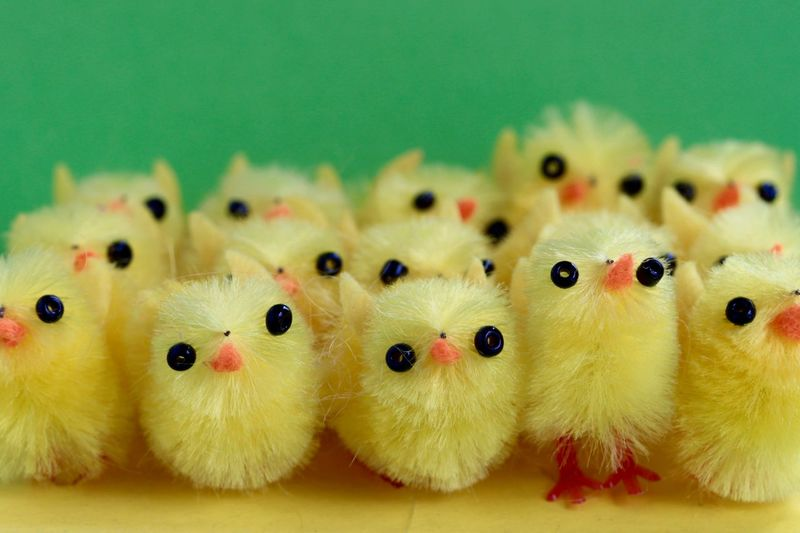 Close-up of yellow artificial chicks on table