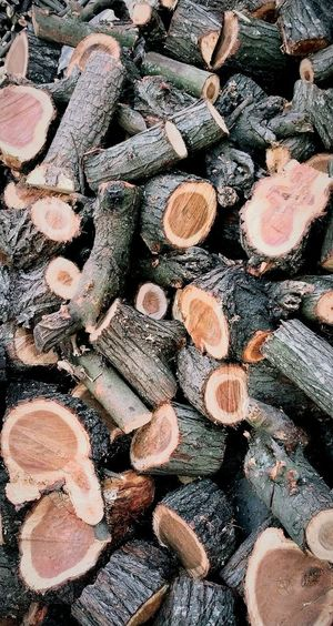 logged. not. Wallpaper Background Wood Fire Wood Woodpile Deforestation Pile Log Stack Tree Ring Firewood Fossil Fuel