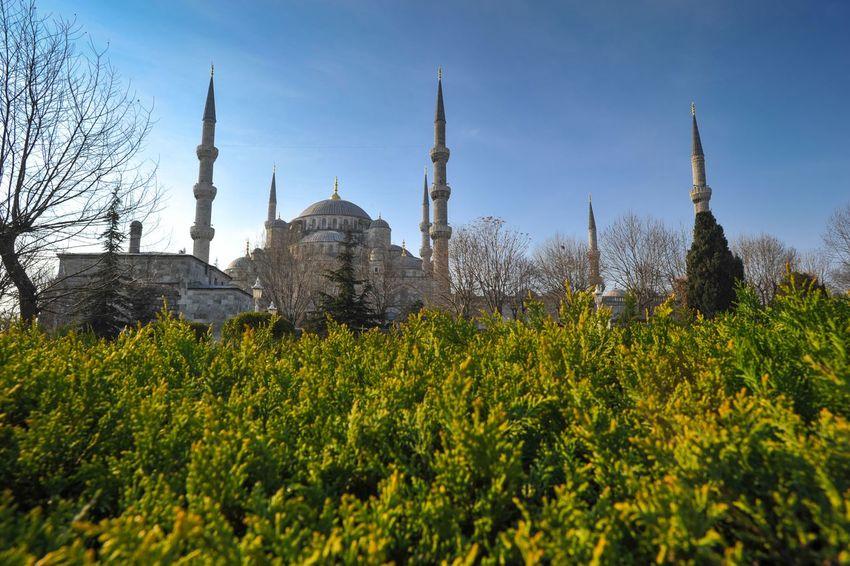 Istanbul Turkey Sultanahmet SultanAhmetBlueMosque Mosque Architecture Sightseeing Islam Landscape Sultanahmet Camii