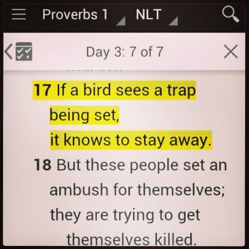 Proverbs 1:17 WatchForTraps