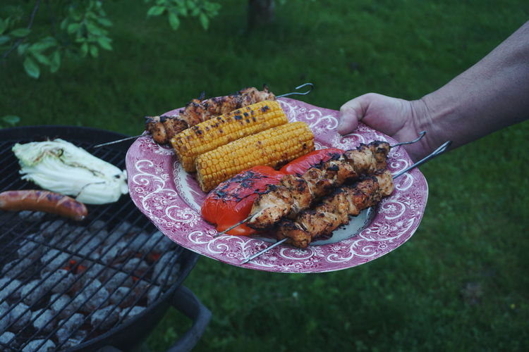Cropped image of hand holding grilled food in plate by barbecue in back yard