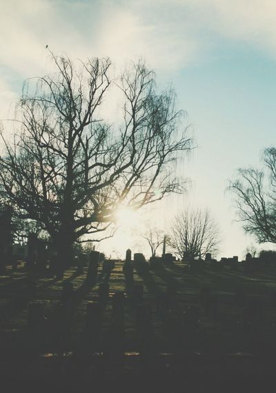 The ending of another chapter. Cemetery Setting Sun Sunset Ending Goodbye Beauty In A Strange Place Autumn Oregon Lay Me Down Remember Lonely I Miss You Ghosts Haunting  Memories Sunshine Sky Tree Branch Tranquil Scene Tranquility Silhouette Bare Tree Solitude Footpath