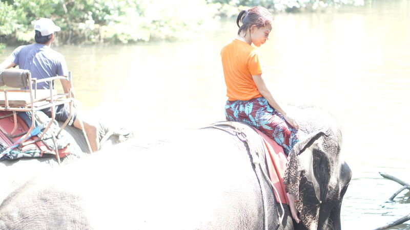 Elephant Ride Elephant Canal Stream Friendship Child Togetherness Full Length Girls Summer Youth Culture Happiness Sitting Childhood Water Sport
