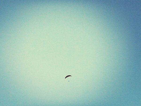Liberty Fly